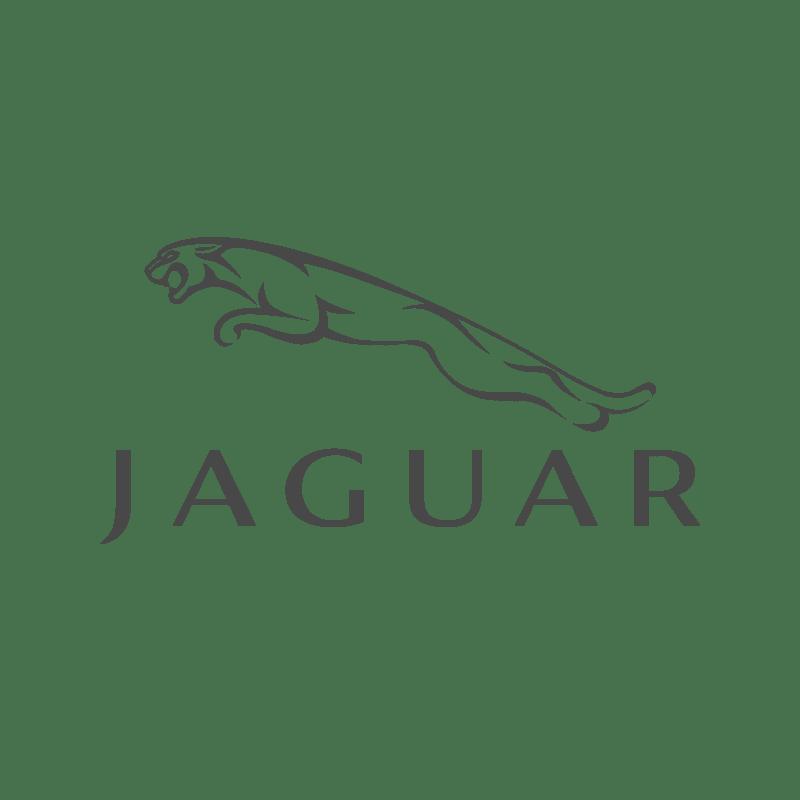 Jaguar Logo DYS