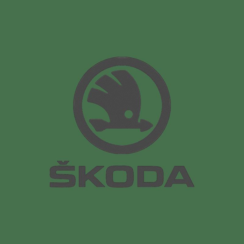 Skoda Logo DYS