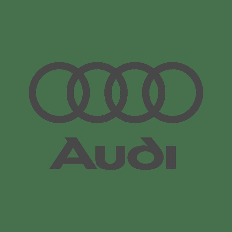 Logo Audi DYS